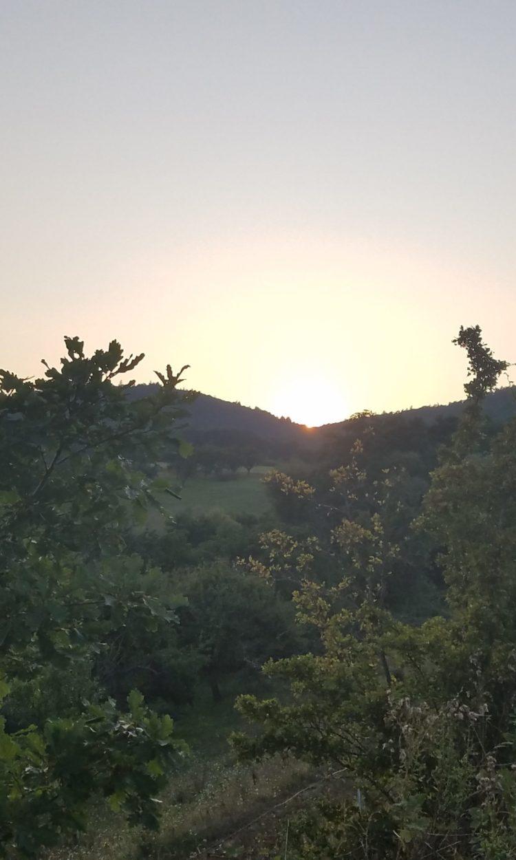 Sonnenuntergang über dem Donnersberg